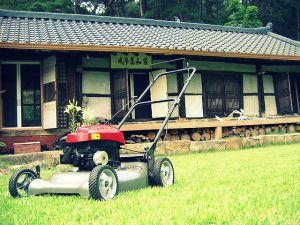 Here's How lớn Keep Your Lawn Mower for 15 years or More
