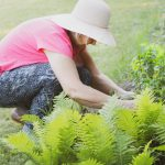 Our Top 10 List For Worst Gardening Mistakes Gardeners Can Make